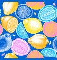 neon colored citrus fruits background ink hand vector image vector image
