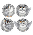 set of owl on circle template vector image vector image
