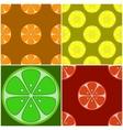 backgrounds citrus fruit vector image
