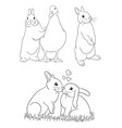 cute rabbit line art vector image vector image
