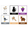 flashcards with main colors learn primary colours vector image vector image