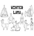 hand-drawn set of cute monochrome winter lamas vector image vector image