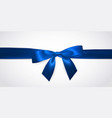 realistic blue bow with horizontal ribbon vector image vector image