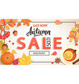 autumn sale promo just now banner with discount vector image vector image