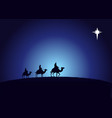 birth christ wise men vector image vector image