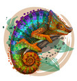 chameleon a graphic multi-colored portrait vector image vector image