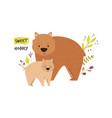 cute wombat family baby cartoon design vector image vector image