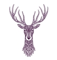 Hand drawn head deer reindeer Christmas xmas vector image