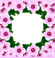 hibiscus syriacus - rose of sharon border2 vector image vector image