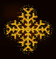 magic golden snowflake vector image vector image