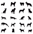 silhouette dog set various dog pet hound guard vector image