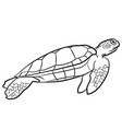 swimming turtle vector image
