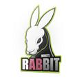 white rabbit vector image vector image