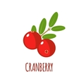 Cranberry icon in flat style on white background vector image vector image