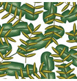 exotic and tropical leafs plants pattern vector image vector image