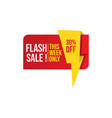 flash sale banner image vector image