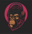 gorilla headphones vector image vector image