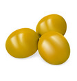 green olives icon realistic style vector image vector image