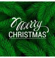 Merry Christmas Lettering Green branches of spruce vector image vector image