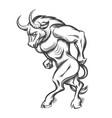minotaur engraving vector image