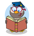Owl Teacher With Graduate Cap Reading A Book vector image vector image