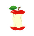 red apple stub isolated on vector image