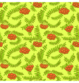 Rowan berry floral botany seamless pattern vector image vector image