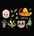skull sombrero cactus mexican symbols collection vector image