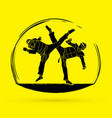 taekwondo fighting graphic vector image vector image