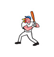 Turkey Baseball Hitter Batting Isolated Cartoon vector image vector image