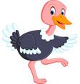 cute ostrich cartoon vector image