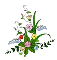 Beautiful bouquet of wild flowers vector image vector image