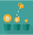 bitcoin money flowers set with watering cans vector image
