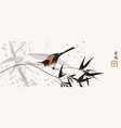 chinese banner with a magpie on a branch vector image vector image