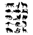 collection of animal silhouette vector image