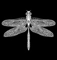 Hand drawn dragonfly on white background vector image