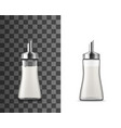 salt shaker glass bottle with pouring spout vector image vector image