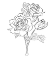 Sketch black and white rose vector image vector image