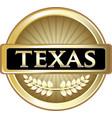 texas gold icon vector image