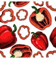 Pepper hand drawn seamless pattern vector image