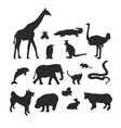 bicg set of animals vector image vector image
