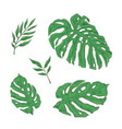 bright set green tropical leaves vector image