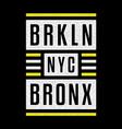 brooklyn vintage print vector image vector image