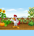 cartoon chicken with various plants agricultural vector image