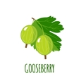 Gooseberry icon in flat style on white background vector image vector image