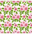 sakura flower seamless pattern vector image vector image
