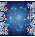 White Christmas tree branches with bullfinches vector image vector image