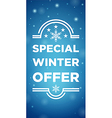 Winter sale special offer vector image vector image