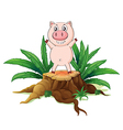 A big tree with a pig vector image vector image