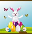 beauty rabbit easter eggs butterflies in field vector image